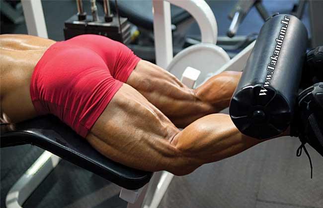bodybuilding-hamstring