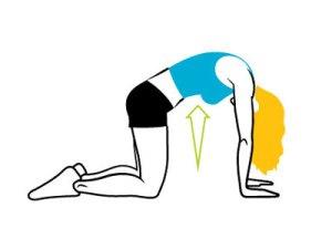 exercise-shakirac0