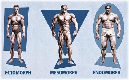 sacramento-somatotype-training-optimized-body