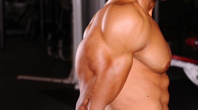 Triceps 1-2-14_1