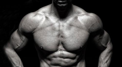پرورش عضلات سرشانه برای مبتدیان(برنامه تمرینی)