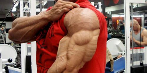 تحولی در پرورش عضلات پشت بازو ویژه مبتدیان(برنامه تمرینی)