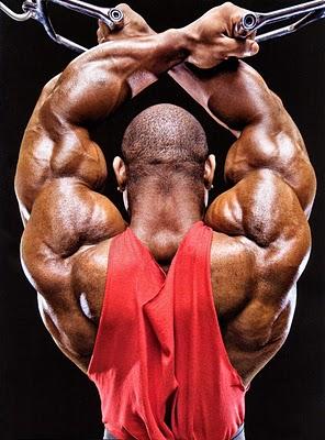 shoulder 3 تمرین ویژه برای ساخت عضلات سرشانه پهن